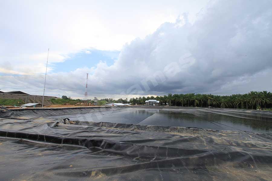 Biogas I